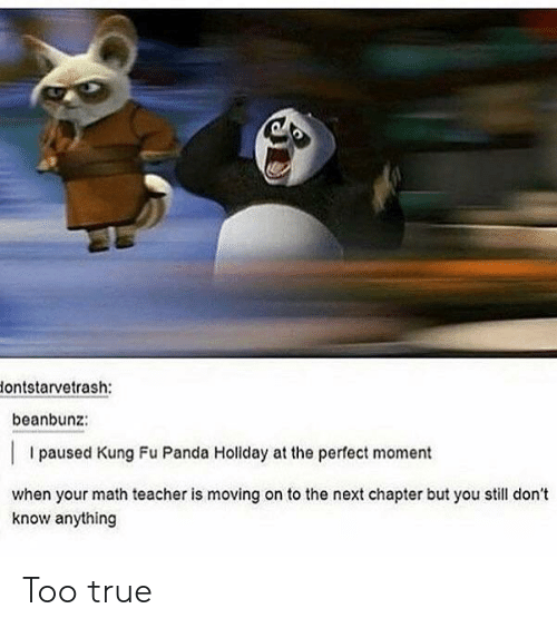Teacher, True, and Panda: lontstarvetrash:  beanbunz:  I paused Kung Fu Panda Holiday at the perfect moment  when your math teacher is moving on to the next chapter but you still don't  know anything Too true