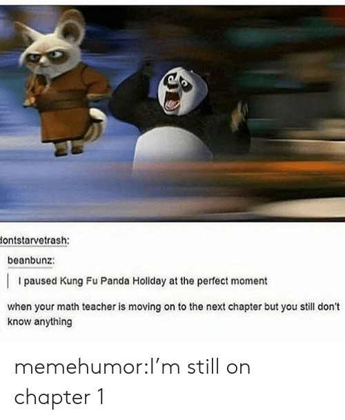 Teacher, Tumblr, and Panda: lontstarvetrash:  beanbunz:  I paused Kung Fu Panda Holiday at the perfect moment  when your math teacher is moving on to the next chapter but you still don't  know anything memehumor:I'm still on chapter 1