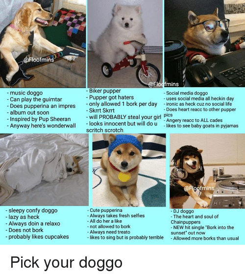 """Børk: loofmins  Flocfmins  Biker pupper  Pupper got haters  music doggo  Does pupperina an impres only allowed 1 bork per day Ionie as heck cuznoalufe  Inspired by Pup Sheeranlooks innocent but will do u -likes to see baby goats in pyjamas  -Social media doggo  - uses social media all heckin day  - Can play the guimtar  - Does heart reacc to other pupper  pics  - album out soon  Skrrt Skrrt  -will PROBABLY steal your girl Angery reacc to ALL cades  Anyway here's wonderwall  scritch scrotch  oofmins  sleepy confy doggo  lazy as heck  Always doin a relaxd  - Does not bork  probably likes cupcakes  - Cute pupperina  Always takes fresh selfies  - All do her a like  - not allowed to bork  - DJ doggo  - The heart and soul of  Chainpuppers  Always need treato  -likes to sing but is probably terrible  NEW hit single """"Bork into the  sunset"""" out now  - Allowed more borks than usual Pick your doggo"""