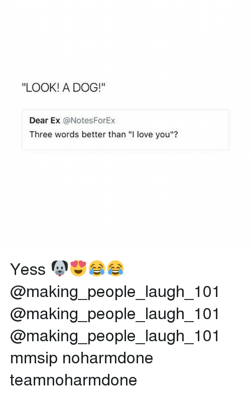 "Love, Memes, and I Love You: ""LOOK! A DOG!""  Dear Ex @NotesForEx  Three words better than ""I love you""? Yess 🐶😍😂😂 @making_people_laugh_101 @making_people_laugh_101 @making_people_laugh_101 mmsip noharmdone teamnoharmdone"
