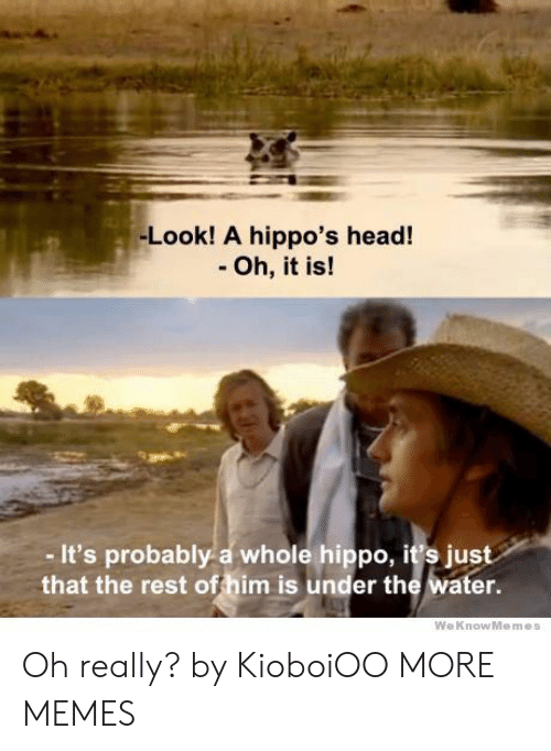 Dank, Head, and Memes: -Look! A hippo's head!  - Oh, it is!  - It's probably a whole hippo, it's just  that the rest offhim is under the water.  WeKnowMemes Oh really? by KioboiOO MORE MEMES
