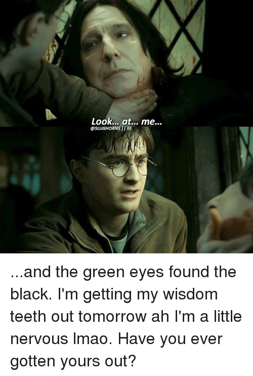 Lmao, Memes, and Black: Look... at... me...  OSLUGHORNS ITMG ...and the green eyes found the black. I'm getting my wisdom teeth out tomorrow ah I'm a little nervous lmao. Have you ever gotten yours out?