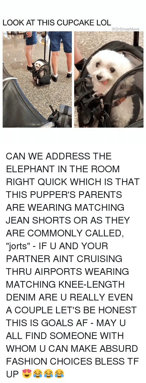 """cruising: LOOK AT THIS CUPCAKE LOL  @DrSmashlove CAN WE ADDRESS THE ELEPHANT IN THE ROOM RIGHT QUICK WHICH IS THAT THIS PUPPER'S PARENTS ARE WEARING MATCHING JEAN SHORTS OR AS THEY ARE COMMONLY CALLED, """"jorts"""" - IF U AND YOUR PARTNER AINT CRUISING THRU AIRPORTS WEARING MATCHING KNEE-LENGTH DENIM ARE U REALLY EVEN A COUPLE LET'S BE HONEST THIS IS GOALS AF - MAY U ALL FIND SOMEONE WITH WHOM U CAN MAKE ABSURD FASHION CHOICES BLESS TF UP 😍😂😂😂"""
