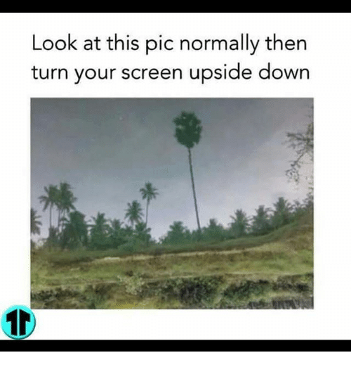 Look at This Pic Normally Then Turn Your Screen Upside Down