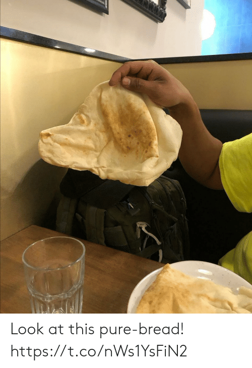 bread: Look at this pure-bread! https://t.co/nWs1YsFiN2