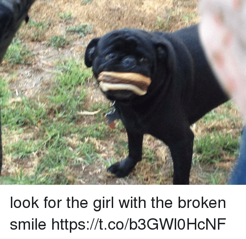 Girl, Smile, and Girl Memes: look for the girl with the broken smile https://t.co/b3GWl0HcNF