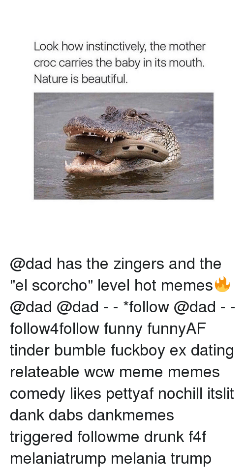 """Nature Is Beautiful: Look how instinctively, the mother  croc carries the baby in its mouth.  Nature is beautiful. @dad has the zingers and the """"el scorcho"""" level hot memes🔥 @dad @dad - - *follow @dad - - follow4follow funny funnyAF tinder bumble fuckboy ex dating relateable wcw meme memes comedy likes pettyaf nochill itslit dank dabs dankmemes triggered followme drunk f4f melaniatrump melania trump"""
