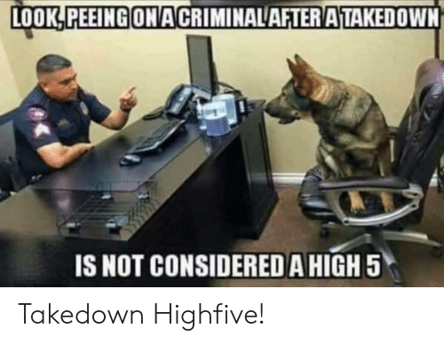 High 5, Look, and High: LOOK,PEEINGONACRIMINALAFTERATAKEDOWN  IS NOT CONSIDERED A HIGH 5 Takedown Highfive!