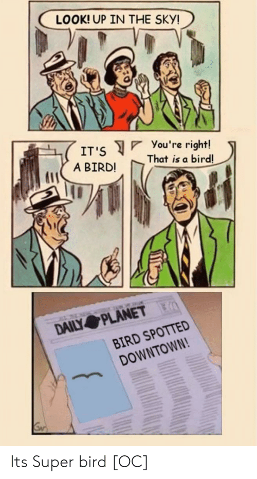 A Bird: LOOK! UP IN THE SKY!  You 're right!  That is a bird!  IT'S  A BIRD!  DAILY PLANET  BIRD SPOTTED  DOWNTOWN! Its Super bird [OC]