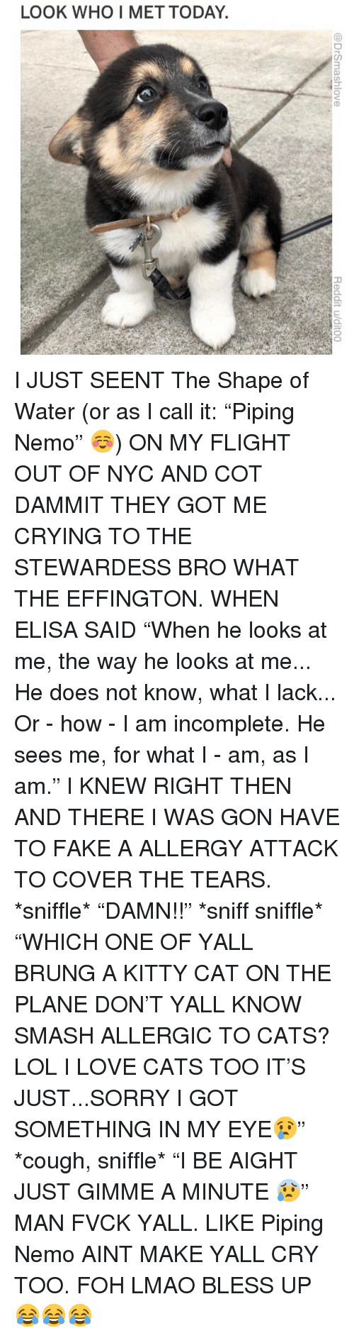 """Bless Up, Cats, and Crying: LOOK WHO I MET TODAY I JUST SEENT The Shape of Water (or as I call it: """"Piping Nemo"""" ☺️) ON MY FLIGHT OUT OF NYC AND COT DAMMIT THEY GOT ME CRYING TO THE STEWARDESS BRO WHAT THE EFFINGTON. WHEN ELISA SAID """"When he looks at me, the way he looks at me... He does not know, what I lack... Or - how - I am incomplete. He sees me, for what I - am, as I am."""" I KNEW RIGHT THEN AND THERE I WAS GON HAVE TO FAKE A ALLERGY ATTACK TO COVER THE TEARS. *sniffle* """"DAMN!!"""" *sniff sniffle* """"WHICH ONE OF YALL BRUNG A KITTY CAT ON THE PLANE DON'T YALL KNOW SMASH ALLERGIC TO CATS? LOL I LOVE CATS TOO IT'S JUST...SORRY I GOT SOMETHING IN MY EYE😢"""" *cough, sniffle* """"I BE AIGHT JUST GIMME A MINUTE 😰"""" MAN FVCK YALL. LIKE Piping Nemo AINT MAKE YALL CRY TOO. FOH LMAO BLESS UP 😂😂😂"""