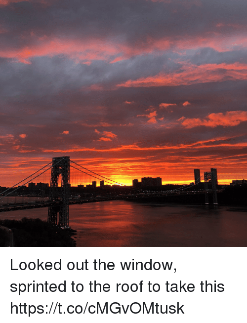 Memes, 🤖, and Window: Looked out the window, sprinted to the roof to take this https://t.co/cMGvOMtusk