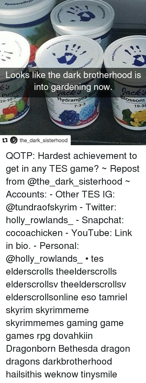 Skyrim, Snapchat, and Twitter: Looks like the dark brotherhood is  into gardening now  20-20  ydrange  Slossom  7-3  10-30  ti the dark sisterhood QOTP: Hardest achievement to get in any TES game? ~ Repost from @the_dark_sisterhood ~ Accounts: - Other TES IG: @tundraofskyrim - Twitter: holly_rowlands_ - Snapchat: cocoachicken - YouTube: Link in bio. - Personal: @holly_rowlands_ • tes elderscrolls theelderscrolls elderscrollsv theelderscrollsv elderscrollsonline eso tamriel skyrim skyrimmeme skyrimmemes gaming game games rpg dovahkiin Dragonborn Bethesda dragon dragons darkbrotherhood hailsithis weknow tinysmile