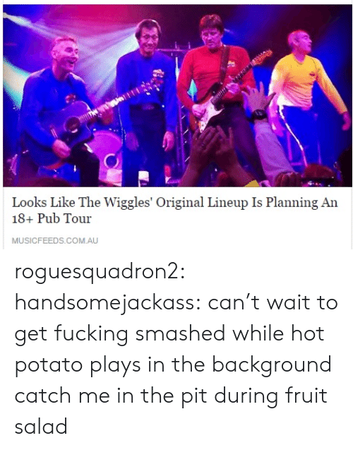 fruit salad: Looks Like The Wiggles' Original Lineup Is Planning An  18+ Pub Tour  MUSICFEEDS.COM.AU roguesquadron2: handsomejackass:  can't wait to get fucking smashed while hot potato plays in the background  catch me in the pit during fruit salad