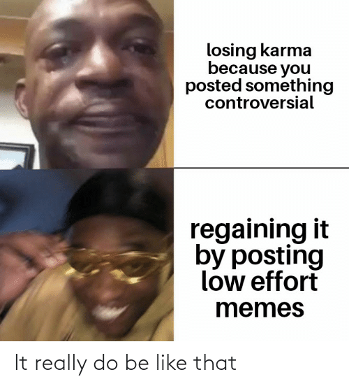 Be Like, Memes, and Reddit: losing karma  because you  posted something  controversial  regaining it  by posting  low effort  memes It really do be like that