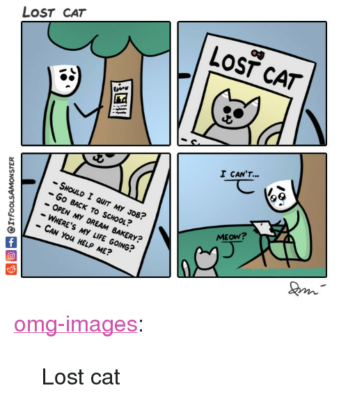"Lost Cat: LOST CAT  LOST CAT  I CANT  -SHOLD I QUIT MY JOB?  -Go BACK TO SCHOOL?  - OPEN MY DREAM BAKERY?  - WHERE'S MY LIFE GOING?  CAN You HELP ME?  MEOW? <p><a href=""https://omg-images.tumblr.com/post/162282108827/lost-cat"" class=""tumblr_blog"">omg-images</a>:</p>  <blockquote><p>Lost cat</p></blockquote>"
