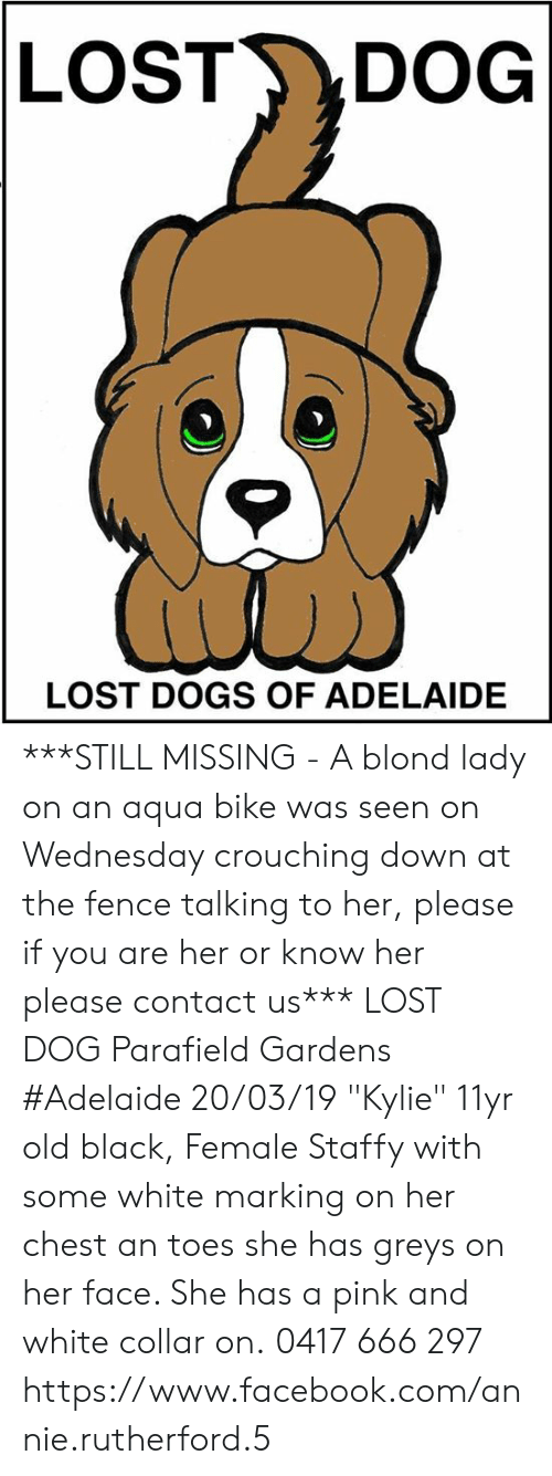 "DeMarcus Cousins, Dogs, and Facebook: LOST DOG  LOST DOGS OF ADELAIDE ***STILL MISSING - A blond lady on an aqua bike was seen on Wednesday crouching down at the fence talking to her, please if you are her or know her please contact us***  LOST DOG Parafield Gardens #Adelaide 20/03/19 ""Kylie"" 11yr old black, Female Staffy with some white marking on her chest an toes she has greys on her face. She has a pink and white collar on. 0417 666 297  https://www.facebook.com/annie.rutherford.5"