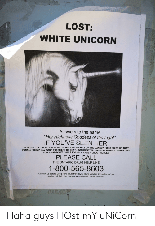 """Doug Ford: LOST:  WHITE UNICORN  Answers to the name  """"Her Highness Goddess of the Light""""  IF YOU'VE SEEN HER,  OR IF SHE TOLD YOU THAT DORITOS ARE A VEGETABLE ON THE CANADA FOOD GUIDE OR THAT  DONALD TRUMP IS A GOOD PRESIDENT OR THAT JAGERMEISTER SHOTS AT MIDNIGHT WON'T GIVE  YOU A HANGOVER, YOU PROBABLY HAVE A DRUG PROBLEM  PLEASE CALL  THE ONTARIO DRUG HELP LINE  1-800-565-8603  But hurry up before Doug Ford shuts that down, along with his decimation of our  mother risk help line, home care and public health services Haha guys I lOst mY uNiCorn"""