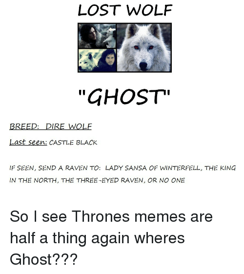 "in-the-north: LOST WOLF  ""GHOST""  BREED: DIRE WOLF  Last seen: CASTLE BLACK  IF SEEN, SEND A RAVEN TO: LADY SANSA OF WINTERFELL, THE KING  IN THE NORTH, THE THREE-EYED RAVEN, OR NO ONE So I see Thrones memes are half a thing again wheres Ghost???"
