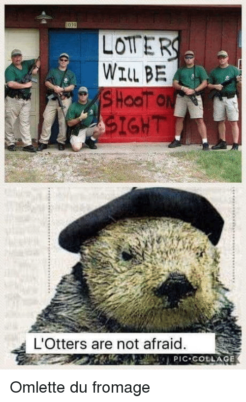 Collage: LOTER  WILL BE  SIGHT  L'Otters are not afraid.  PIC COLLAGE Omlette du fromage