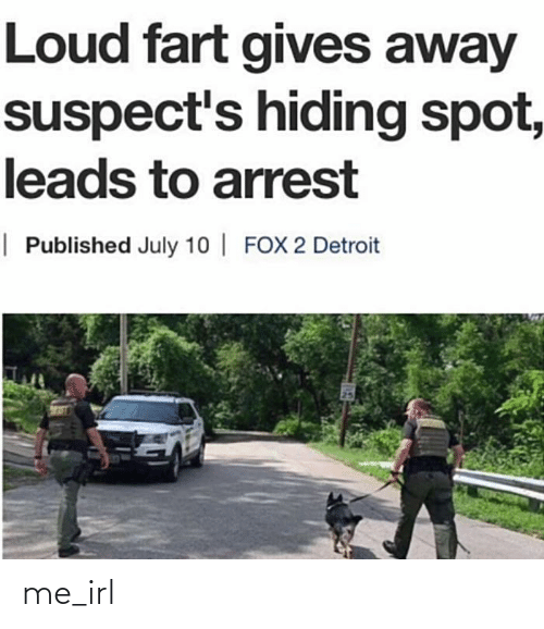 Detroit: Loud fart gives away  suspect's hiding spot,  leads to arrest  | Published July 10 | FOX 2 Detroit me_irl