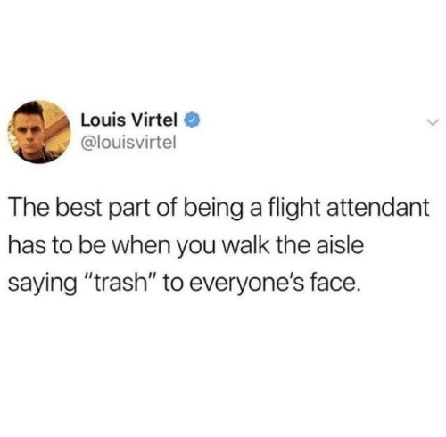 "Dank, Trash, and Best: Louis Virtel  @louisvirtel  The best part of being a flight attendant  has to be when you walk the aisle  saying ""trash"" to everyone's face."