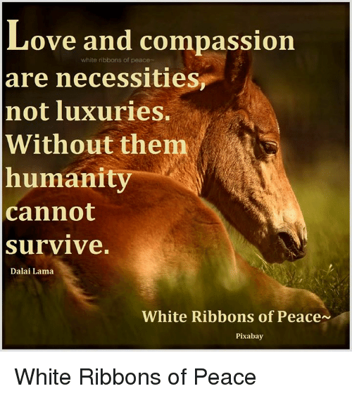 Love And Compassion White Ribbons Of Peace Are Necessities Not