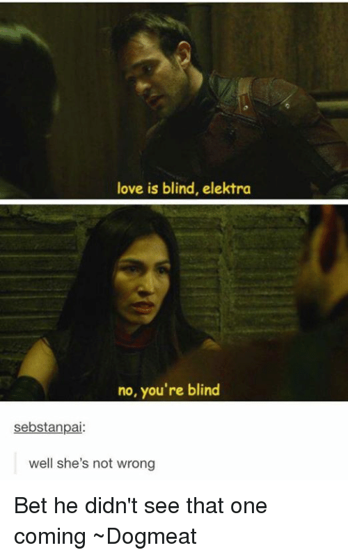 elektra: love is blind, elektra  no, you're blind  sebstanpai:  well she's not wrong Bet he didn't see that one coming  ~Dogmeat