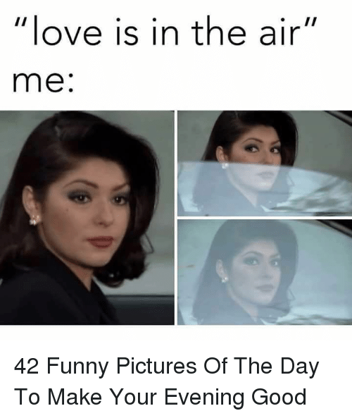 """Funny Pictures Of: love is in the air""""  me: 42 Funny Pictures Of The Day To Make Your Evening Good"""