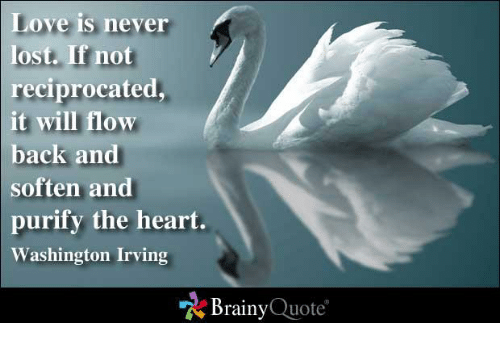 washington irving: Love is never  lost. If not  reciprocated,  it will flow  back and  soften and  purify the heart  Washington Irving  Brainy  Quote