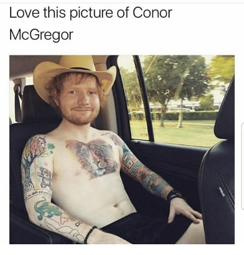 Conor McGregor, Love, and Dank Memes: Love this picture of Conor  McGregor