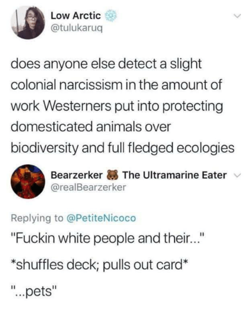 """Animals, White People, and Work: Low Arctic  @tulukaruq  does anyone else detect a slight  colonial narcissism in the amount of  work Westerners put into protecting  domesticated animals over  biodiversity and full fledged ecologies  Bearzerker The Ultramarine Eater  @realBearzerker  Replying to @PetiteNicoco  """"Fuckin white people and their...""""  *shuffles deck; pulls out card*  """"...pets"""""""