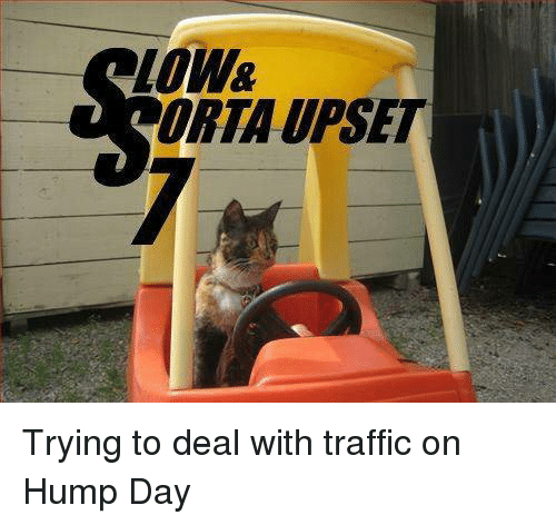 Upsetted: loW  ORTA UPSET Trying to deal with traffic on Hump Day
