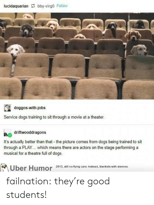 Cars, Dogs, and Tumblr: lucidaquarian bby-virgo Follow  doggos-with-jobs  Service dogs training to sit through a movie at a theater.  driftwooddragons  It's actually better than that the picture comes from dogs being trained to sit  through a PLAY... which means there are actors on the stage performing a  musical for a theatre full of dogs.  Uber Humor 2013, still no flying cars. Instead, blankets with sleeves. failnation:  they're good students!