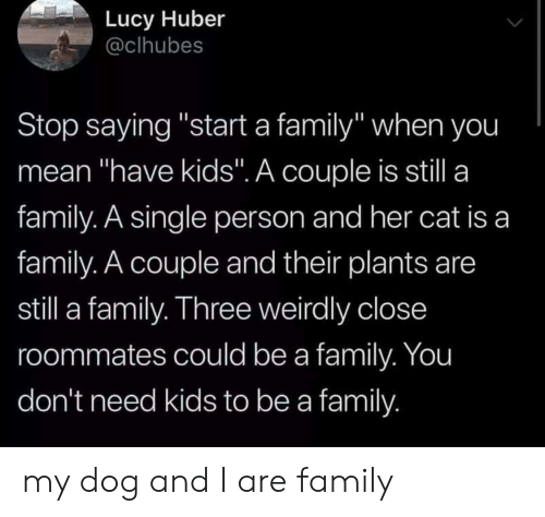 """Family, Kids, and Lucy: Lucy Huber  @clhubes  Stop saying """"start a family"""" when you  mean """"have kids"""". A couple is still a  family. A single person and her cat is a  family. A couple and their plants are  still a family. Three weirdly close  roommates could be a family. You  don't need kids to be a family my dog and I are family"""