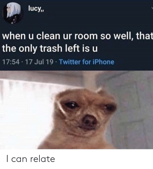 Lucy: lucy,,  when u clean ur room so well, that  the only trash left is u  17:54 17 Jul 19 Twitter for iPhone I can relate