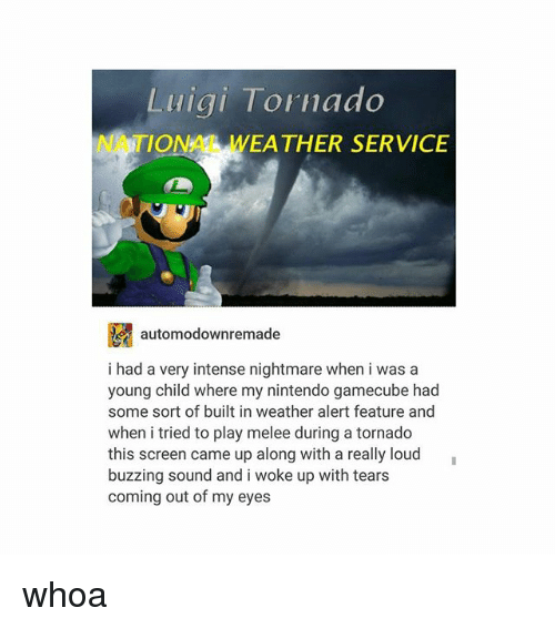 Weå›: Luiai Tornado  NATIONAL WEA THER SERVICE  E automodownremade  i had a very intense nightmare when i was a  young child where my nintendo gamecube had  some sort of built in weather alert feature and  when i tried to play melee during a tornado  this screen came up along with a really loud  buzzing sound and i woke up with tears  coming out of my eyes whoa