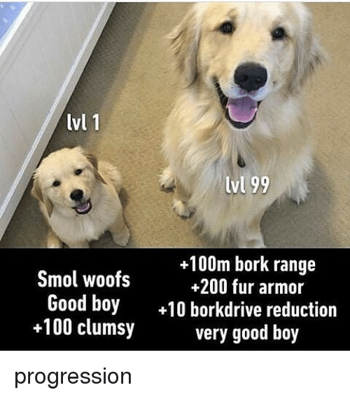 Borking: lvl 1  lvl 99  +100m bork range  Smol woofs  +200 fur armor  Good boy  10 borkdrive reduction  +100 clumsy  very good boy progression