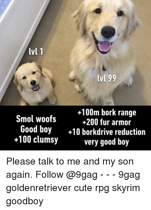 Borking: lvl 1  lvl 99  +100m bork range  Smol woofs  +200 fur armor  Good boy  +10 borkdrive reduction  +100 clumsy  very good boy Please talk to me and my son again. Follow @9gag - - - 9gag goldenretriever cute rpg skyrim goodboy