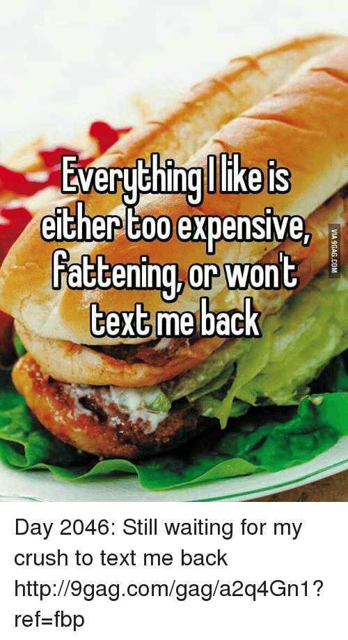 Dank, 🤖, and Ref: LWerything Ilike is  either too expensive,  Fattening, or wont  text  me back Day 2046: Still waiting for my crush to text me back http://9gag.com/gag/a2q4Gn1?ref=fbp