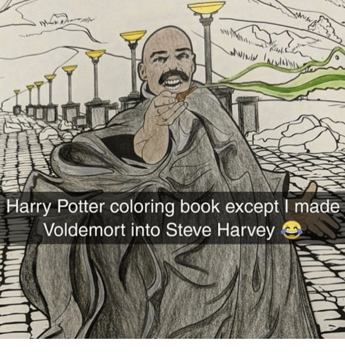Harry Potter, Steve Harvey, and Book: lwiv  Harry Potter coloring book except I made  Voldemort into Steve Harvey e