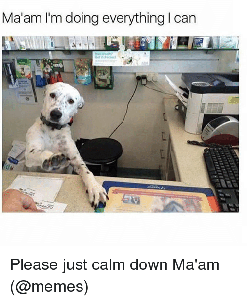 MêMes: Ma'am I'm doing everything I can Please just calm down Ma'am (@memes)