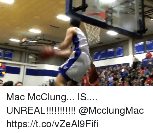 Memes, 🤖, and Mac: Mac McClung... IS.... UNREAL!!!!!!!!!!! @McclungMac https://t.co/vZeAl9Fifi