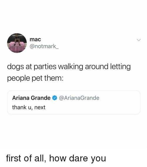 Ariana Grande, Dogs, and Relatable: mac  @notmark  dogs at parties walking around letting  people pet them:  Ariana Grande  thank u, next  @ArianaGrande first of all, how dare you