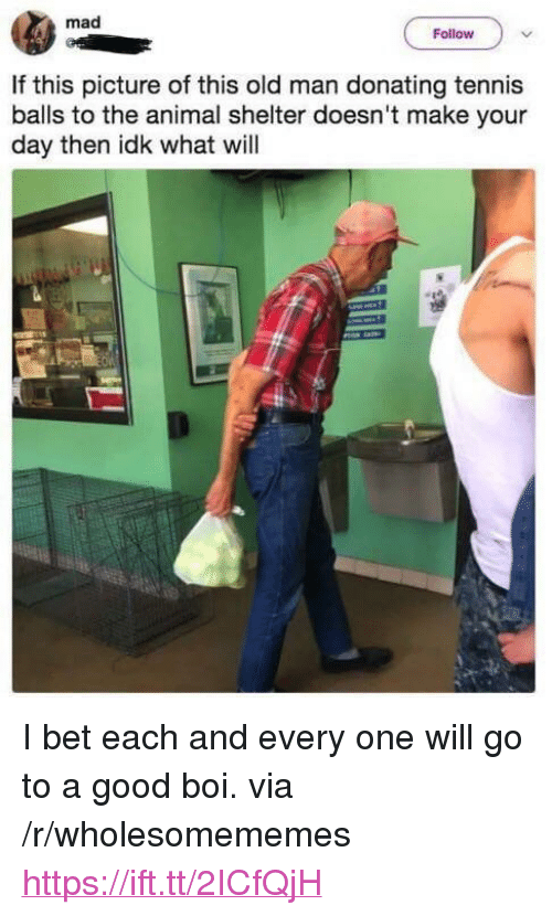 """I Bet, Old Man, and Animal: mad  Follow  If this picture of this old man donating tennis  balls to the animal shelter doesn't make your  day then idk what will <p>I bet each and every one will go to a good boi. via /r/wholesomememes <a href=""""https://ift.tt/2ICfQjH"""">https://ift.tt/2ICfQjH</a></p>"""