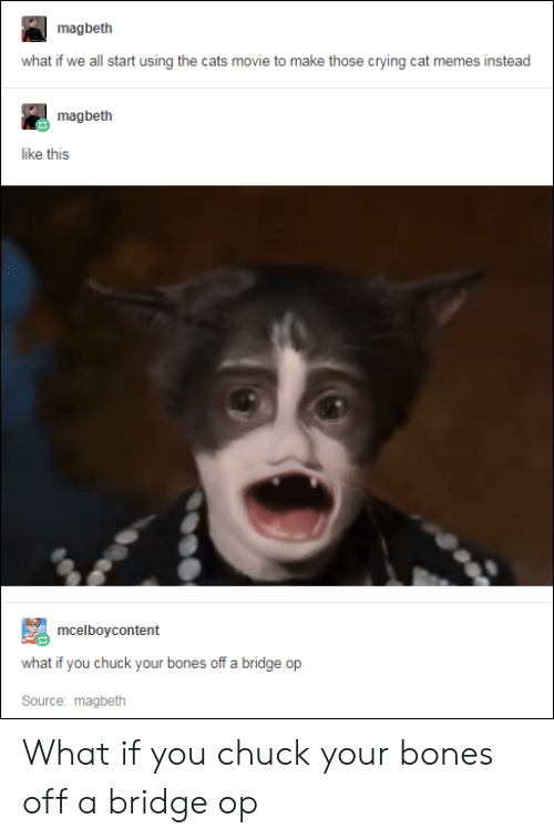 Bones, Cats, and Crying: magbeth  what if we all start using the cats movie to make those crying cat memes instead  magbeth  like this  mcelboycontent  what if you chuck your bones off a bridge op  Source: magbeth What if you chuck your bones off a bridge op