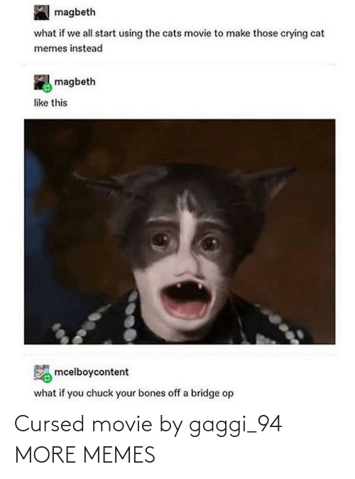 bridge: magbeth  what if we all start using the cats movie to make those crying cat  memes instead  magbeth  like this  mcelboycontent  what if you chuck your bones off a bridge op Cursed movie by gaggi_94 MORE MEMES