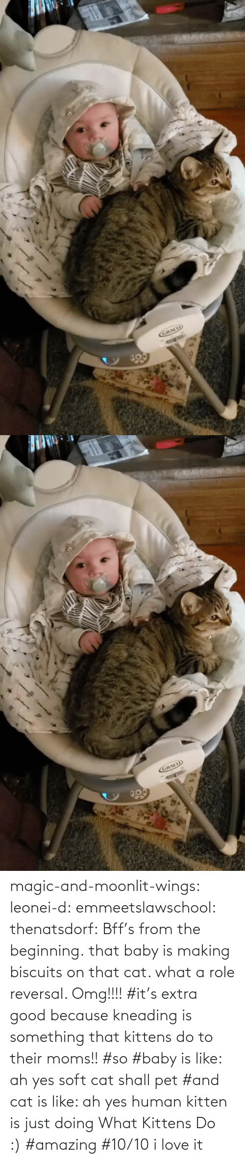 Kittens: magic-and-moonlit-wings: leonei-d:  emmeetslawschool:  thenatsdorf: Bff's from the beginning. that baby is making biscuits on that cat. what a role reversal.    Omg!!!!     #it's extra good because kneading is something that kittens do to their moms!! #so #baby is like: ah yes soft cat shall pet #and cat is like: ah yes human kitten is just doing What Kittens Do :) #amazing #10/10 i love it