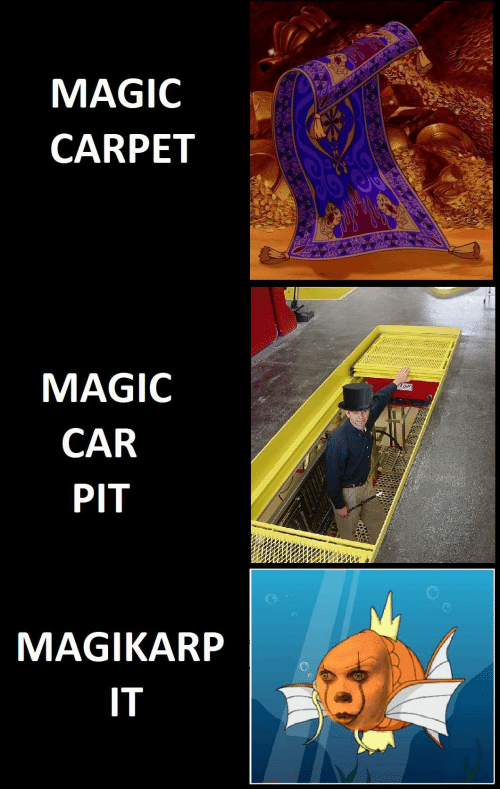 carpet: MAGIC  CARPET  MAGIC  CAR  PIT  MAGIKARP  IT