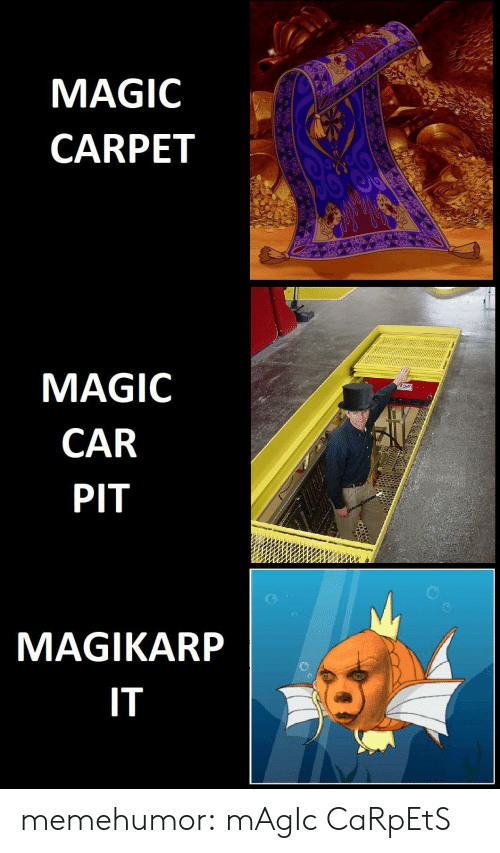 carpet: MAGIC  CARPET  MAGIC  CAR  PIT  MAGIKARP  IT memehumor:  mAgIc CaRpEtS