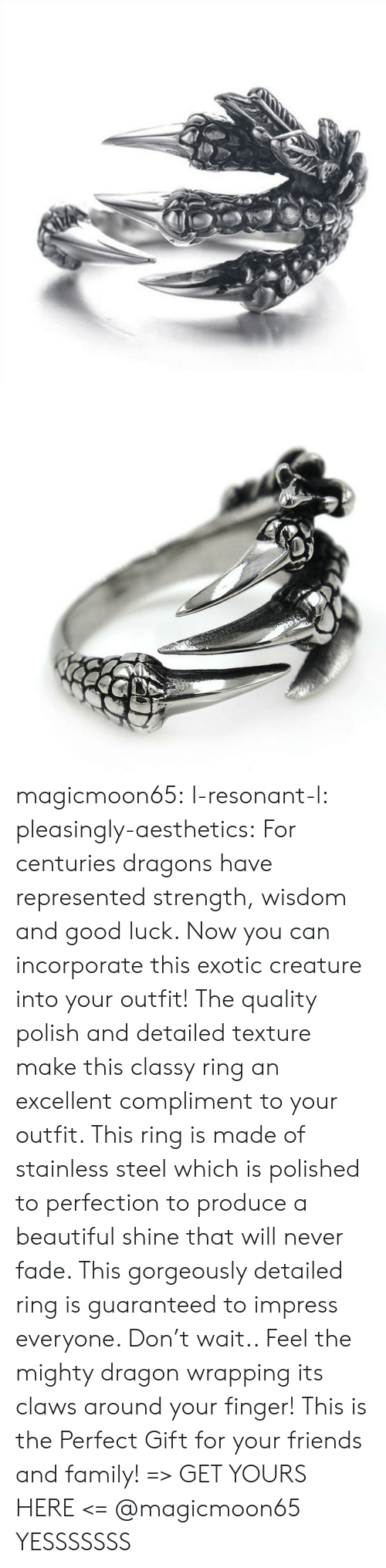 Centuries: magicmoon65:  l-resonant-l:  pleasingly-aesthetics: For centuries dragons have represented strength, wisdom and good luck. Now you can incorporate this exotic creature into your outfit! The quality polish and detailed texture make this classy ring an excellent compliment to your outfit. This ring is made of stainless steel which is polished to perfection to produce a beautiful shine that will never fade.  This gorgeously detailed ring is guaranteed to impress everyone. Don't wait.. Feel the mighty dragon wrapping its claws around your finger! This is the Perfect Gift for your friends and family! => GET YOURS HERE <=   @magicmoon65   YESSSSSSS